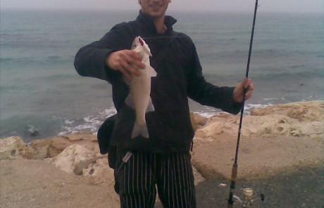 דיג במשרד