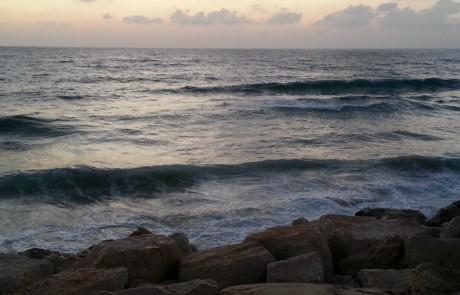 ים של פיספוסים